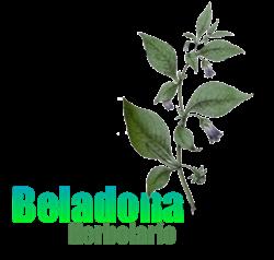 Herbolario Beladona Mediano